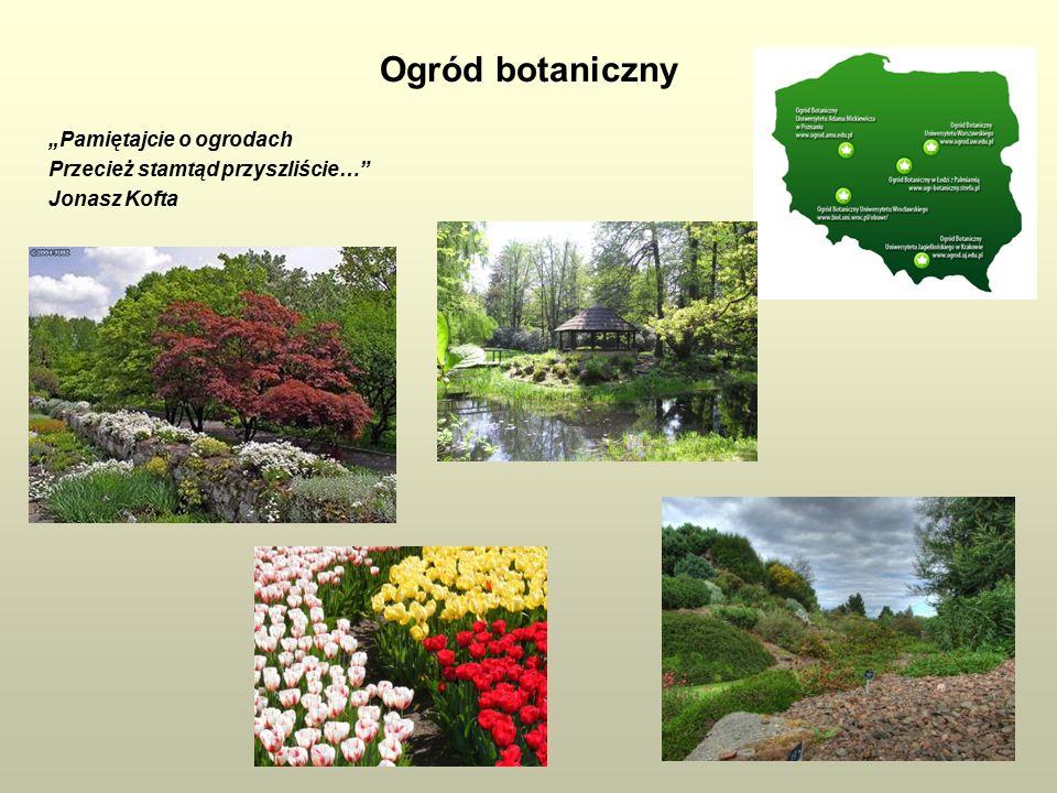 """Ogród botaniczny """"Pamiętajcie o ogrodach Przecież stamtąd przyszliście… Jonasz Kofta"""