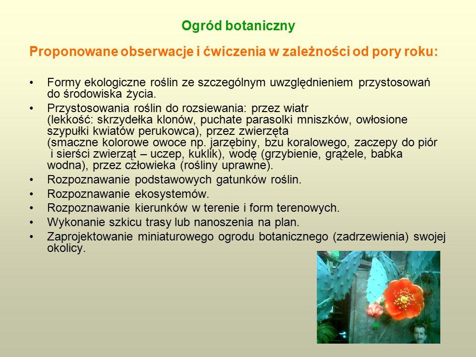 Ogród botaniczny Proponowane obserwacje i ćwiczenia w zależności od pory roku: Formy ekologiczne roślin ze szczególnym uwzględnieniem przystosowań do środowiska życia.