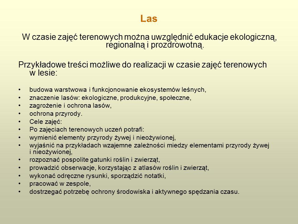 Las W czasie zajęć terenowych można uwzględnić edukacje ekologiczną, regionalną i prozdrowotną.