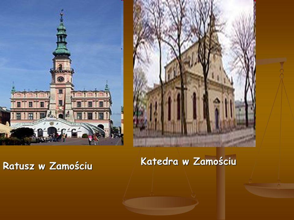 Ratusz w Zamościu Katedra w Zamościu