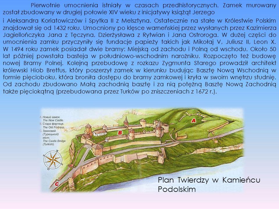 Pierwotnie umocnienia istniały w czasach przedhistorycznych. Zamek murowany został zbudowany w drugiej połowie XIV wieku z inicjatywy książąt Jerzego