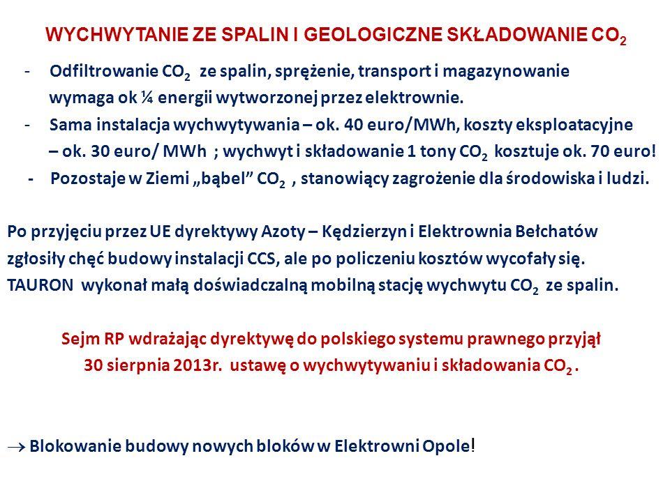 WYCHWYTANIE ZE SPALIN I GEOLOGICZNE SKŁADOWANIE CO 2 - Odfiltrowanie CO 2 ze spalin, sprężenie, transport i magazynowanie wymaga ok ¼ energii wytworzonej przez elektrownie.