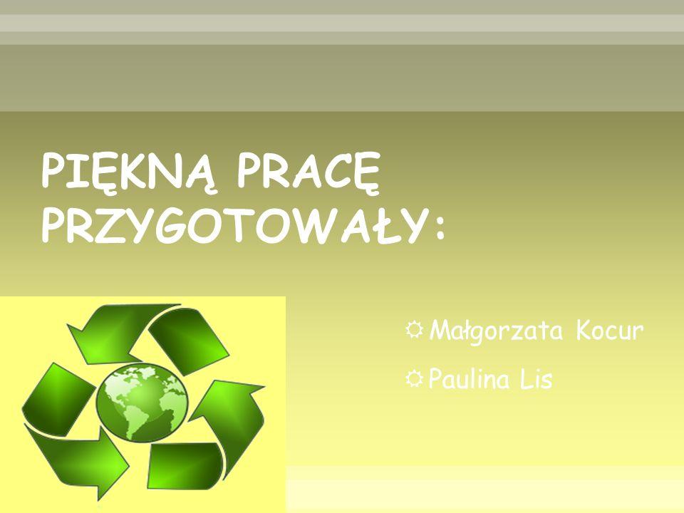 PIĘKNĄ PRACĘ PRZYGOTOWAŁY:  Małgorzata Kocur  Paulina Lis