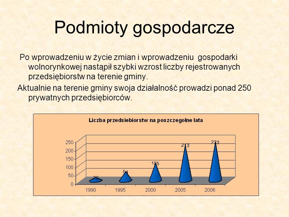 Podmioty gospodarcze Po wprowadzeniu w życie zmian i wprowadzeniu gospodarki wolnorynkowej nastąpił szybki wzrost liczby rejestrowanych przedsiębiorstw na terenie gminy.