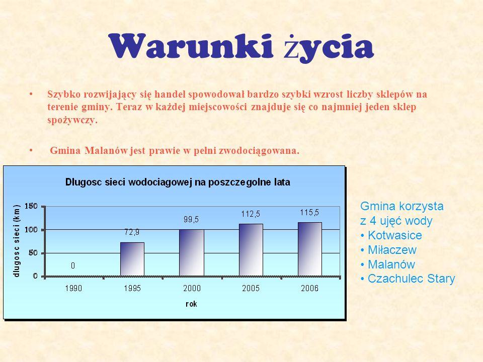 Warunki ż ycia Szybko rozwijający się handel spowodował bardzo szybki wzrost liczby sklepów na terenie gminy.