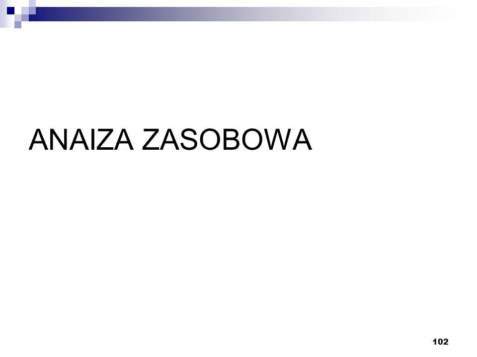102 ANAIZA ZASOBOWA