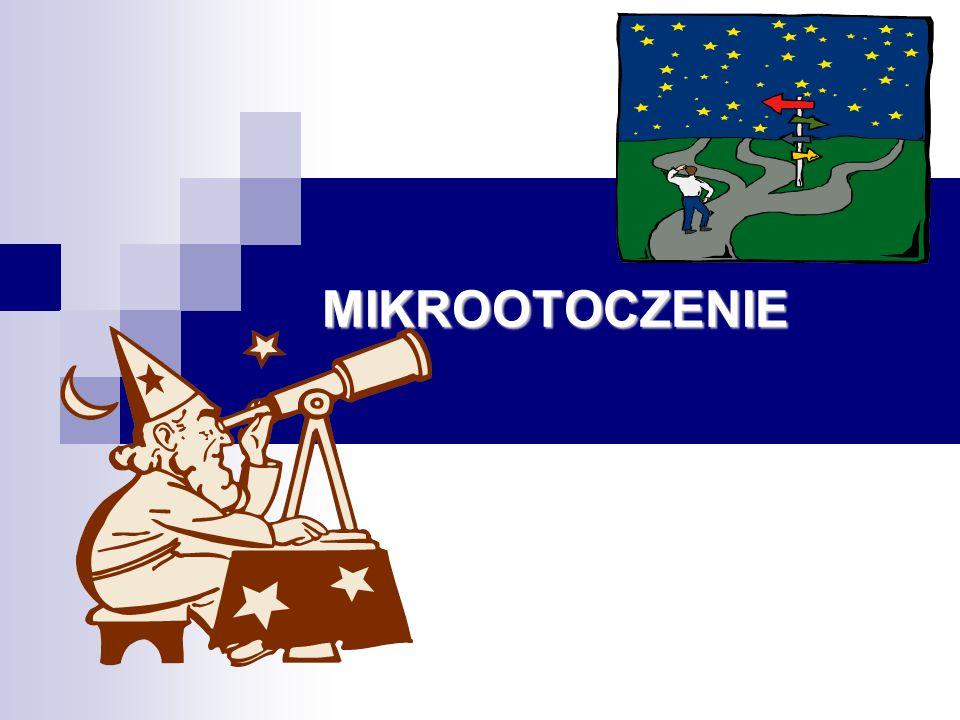 MIKROOTOCZENIE
