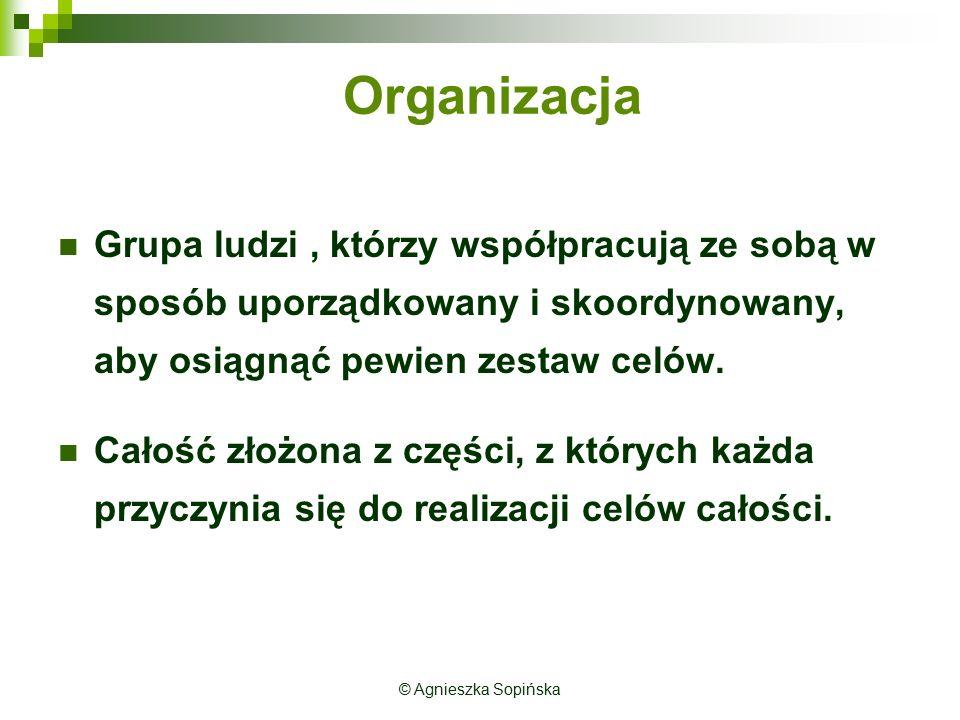 Organizacja Grupa ludzi, którzy współpracują ze sobą w sposób uporządkowany i skoordynowany, aby osiągnąć pewien zestaw celów. Całość złożona z części