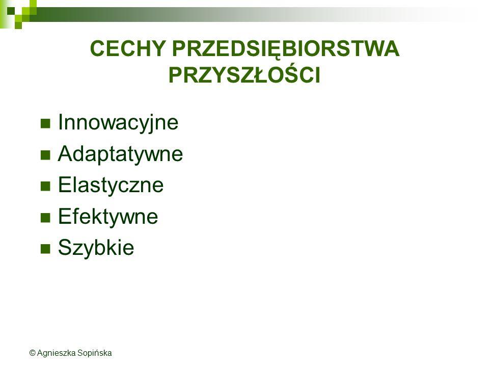 CECHY PRZEDSIĘBIORSTWA PRZYSZŁOŚCI Innowacyjne Adaptatywne Elastyczne Efektywne Szybkie © Agnieszka Sopińska