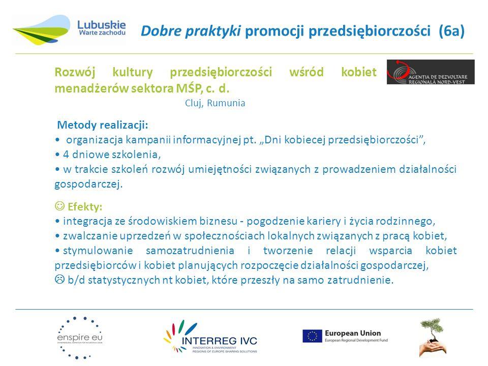 Dobre praktyki promocji przedsiębiorczości (6a) Metody realizacji: organizacja kampanii informacyjnej pt.