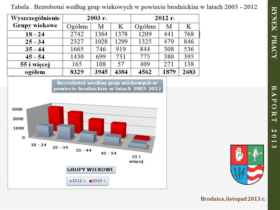 Brodnica, listopad 2013 r. RYNEK PRACY R A P O R T 2 0 1 3