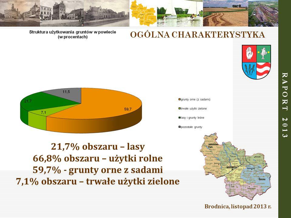 Brodnica, listopad 2013 r. R A P O R T 2 0 1 3 21,7% obszaru – lasy 66,8% obszaru – użytki rolne 59,7% - grunty orne z sadami 7,1% obszaru – trwałe uż