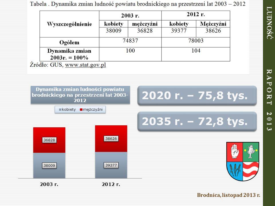 Brodnica, listopad 2013 r. LUDNOŚĆ R A P O R T 2 0 1 3