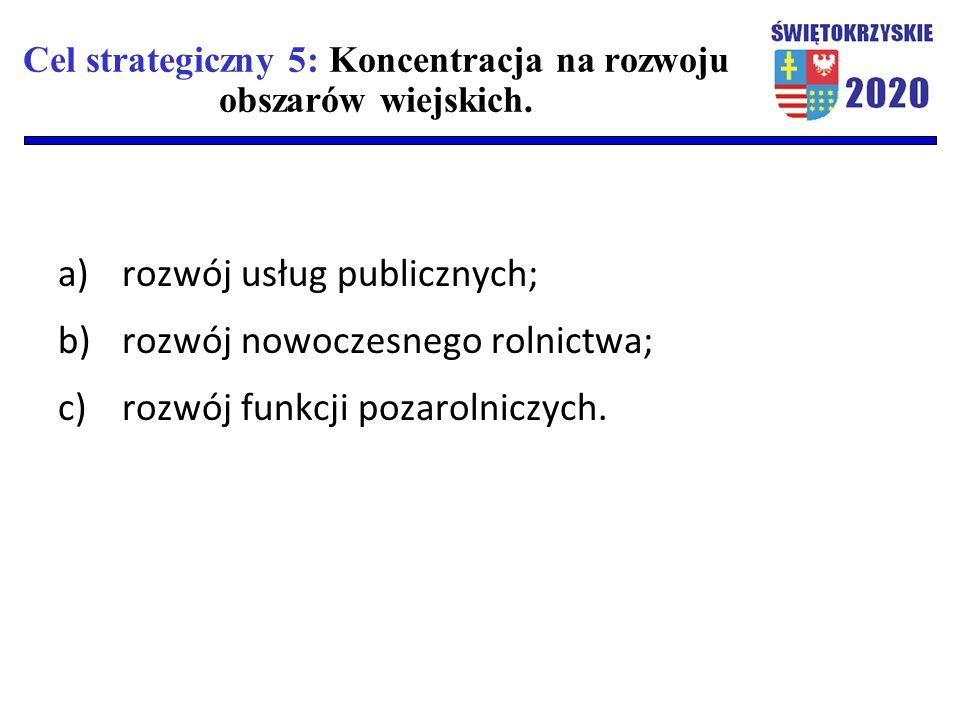 Cel strategiczny 5: Koncentracja na rozwoju obszarów wiejskich. a)rozwój usług publicznych; b)rozwój nowoczesnego rolnictwa; c)rozwój funkcji pozaroln