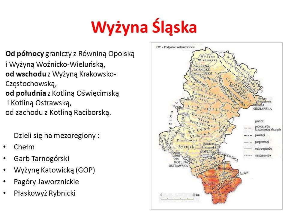 Wyżyna Śląska Od północy graniczy z Równiną Opolską i Wyżyną Woźnicko-Wieluńską, od wschodu z Wyżyną Krakowsko- Częstochowską, od południa z Kotliną Oświęcimską i Kotliną Ostrawską, od zachodu z Kotliną Raciborską.