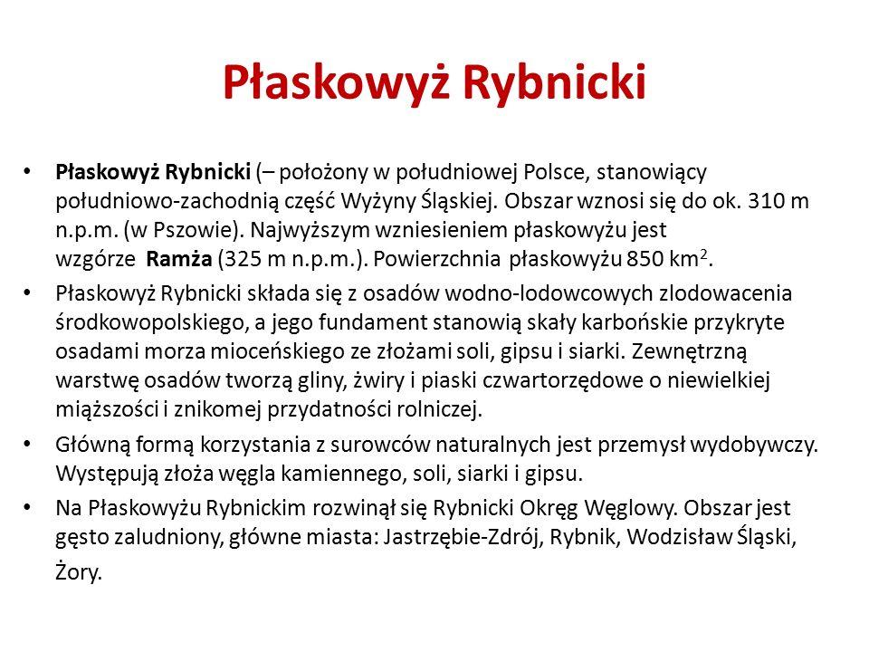 Płaskowyż Rybnicki (– położony w południowej Polsce, stanowiący południowo-zachodnią część Wyżyny Śląskiej.