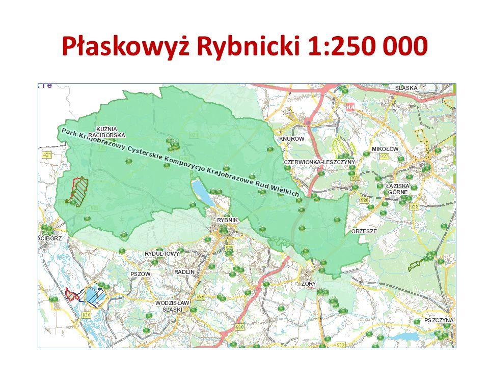 Płaskowyż Rybnicki 1:250 000