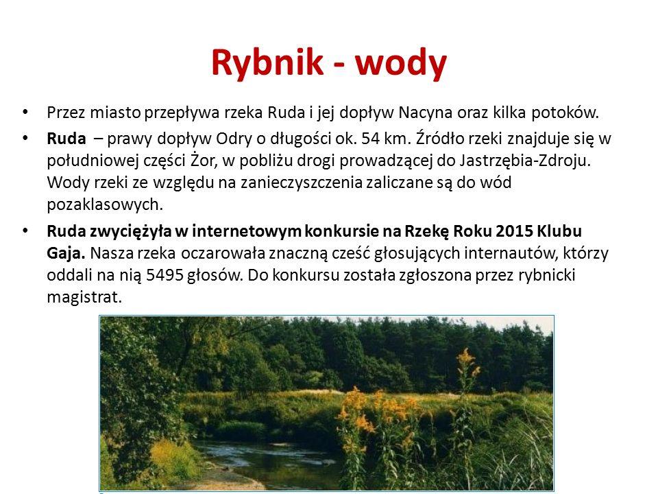 Rybnik - wody Przez miasto przepływa rzeka Ruda i jej dopływ Nacyna oraz kilka potoków.