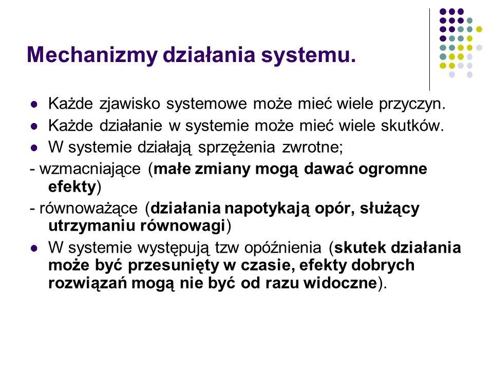 Mechanizmy działania systemu. Każde zjawisko systemowe może mieć wiele przyczyn. Każde działanie w systemie może mieć wiele skutków. W systemie działa