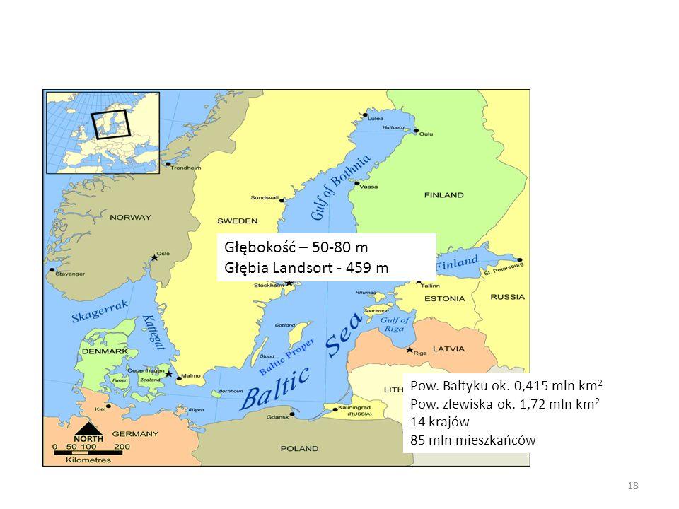 Pow. Bałtyku ok. 0,415 mln km 2 Pow. zlewiska ok. 1,72 mln km 2 14 krajów 85 mln mieszkańców Głębokość – 50-80 m Głębia Landsort - 459 m 18