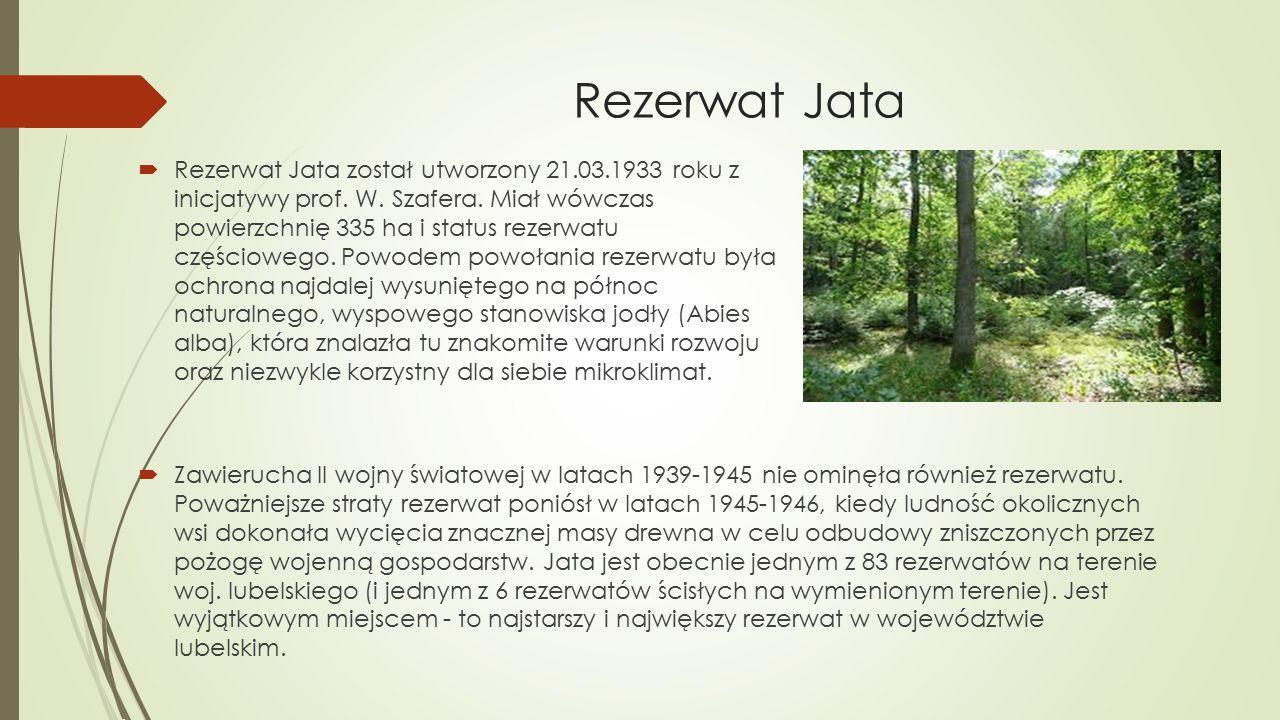 Rezerwat Jata  Rezerwat Jata został utworzony 21.03.1933 roku z inicjatywy prof. W. Szafera. Miał wówczas powierzchnię 335 ha i status rezerwatu częś
