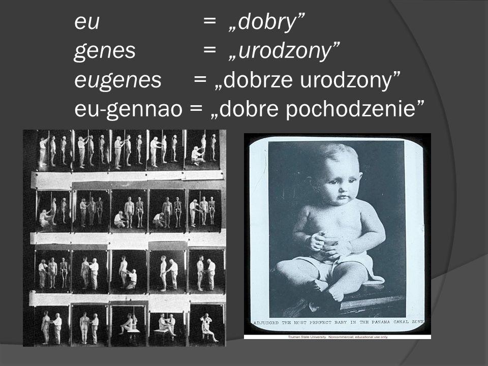 """eu = """"dobry"""" genes = """"urodzony"""" eugenes = """"dobrze urodzony"""" eu-gennao = """"dobre pochodzenie"""""""