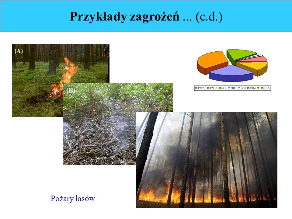 Przykłady zagrożeń... (c.d.) Pożary lasów