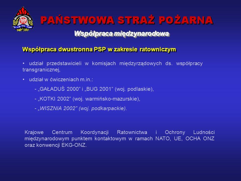 Współpraca PSP w zakresie międzynarodowej pomocy ratowniczej i humanitarnej prowadzona pod auspicjami ONZ, Międzynarodowej Grupy Doradczej ds.