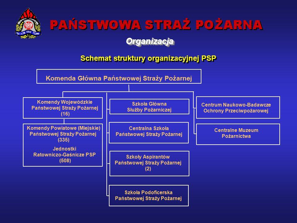 Powrót  czerwiec 1997 rok – III Światowy Kongres Polonii Medycznej październik 1998 rok – IV Regionalna Konferencja Grupy Regionalnej Afryka / Europa - Grupa Doradcza ds.