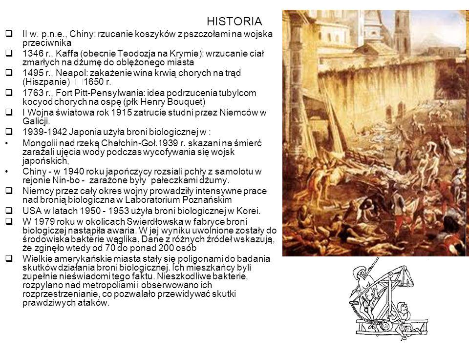 HISTORIA  II w.