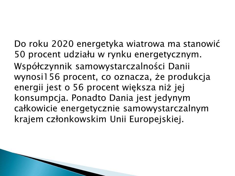 Do roku 2020 energetyka wiatrowa ma stanowić 50 procent udziału w rynku energetycznym.