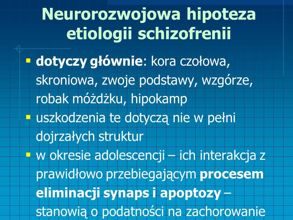 Neurorozwojowa hipoteza etiologii schizofrenii  dotyczy głównie: kora czołowa, skroniowa, zwoje podstawy, wzgórze, robak móżdżku, hipokamp  uszkodzenia te dotyczą nie w pełni dojrzałych struktur  w okresie adolescencji – ich interakcja z prawidłowo przebiegającym procesem eliminacji synaps i apoptozy – stanowią o podatności na zachorowanie