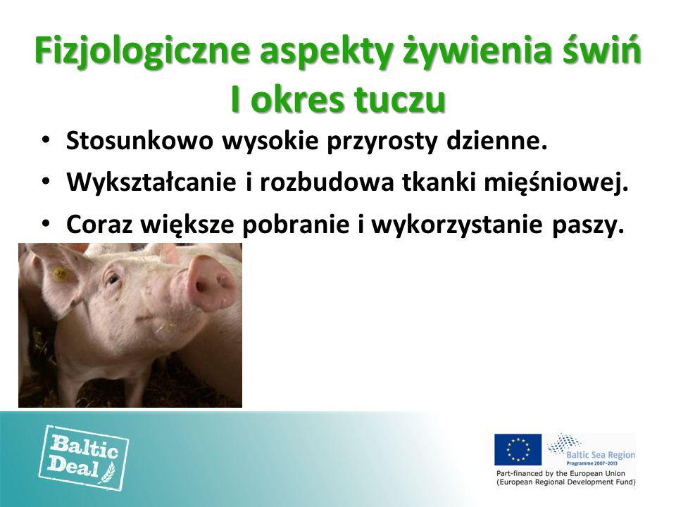 Fizjologiczne aspekty żywienia świń I okres tuczu Stosunkowo wysokie przyrosty dzienne. Wykształcanie i rozbudowa tkanki mięśniowej. Coraz większe pob