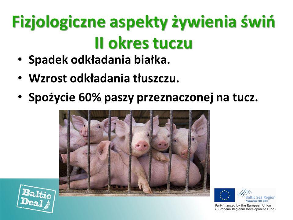 Fizjologiczne aspekty żywienia świń II okres tuczu Spadek odkładania białka. Wzrost odkładania tłuszczu. Spożycie 60% paszy przeznaczonej na tucz.