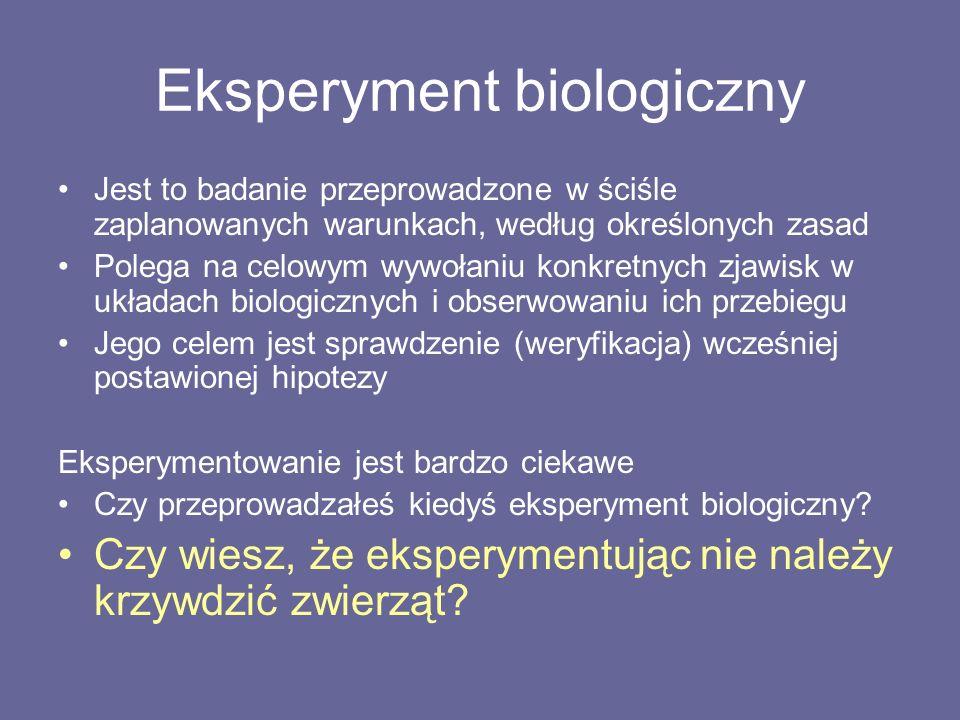 Eksperyment biologiczny Jest to badanie przeprowadzone w ściśle zaplanowanych warunkach, według określonych zasad Polega na celowym wywołaniu konkretnych zjawisk w układach biologicznych i obserwowaniu ich przebiegu Jego celem jest sprawdzenie (weryfikacja) wcześniej postawionej hipotezy Eksperymentowanie jest bardzo ciekawe Czy przeprowadzałeś kiedyś eksperyment biologiczny.