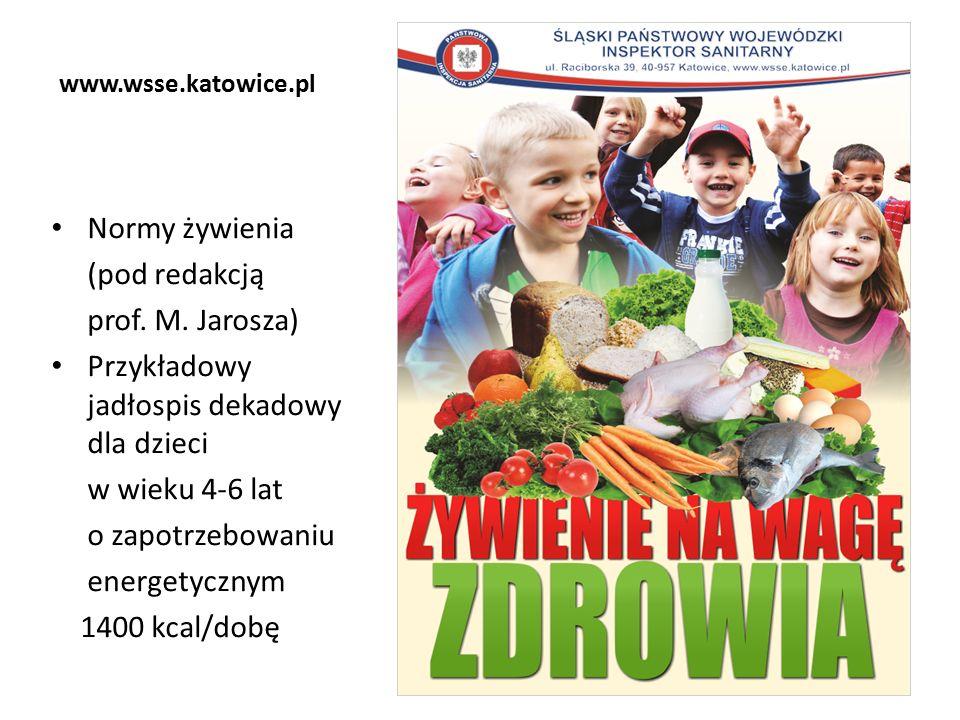 www.wsse.katowice.pl Normy żywienia (pod redakcją prof.