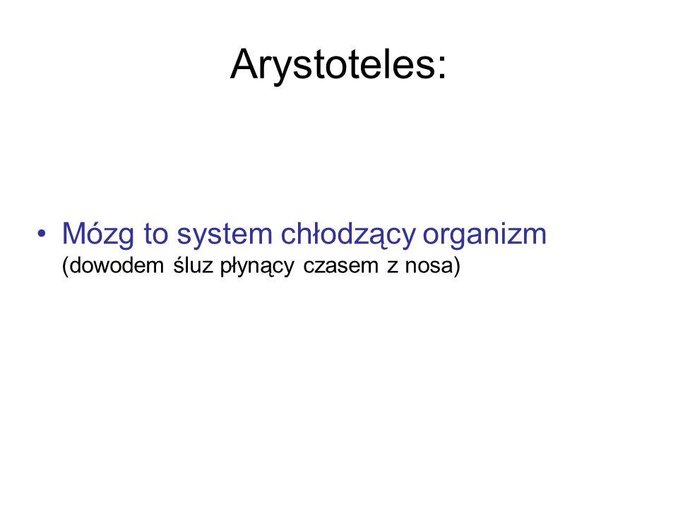 Arystoteles: Mózg to system chłodzący organizm (dowodem śluz płynący czasem z nosa)
