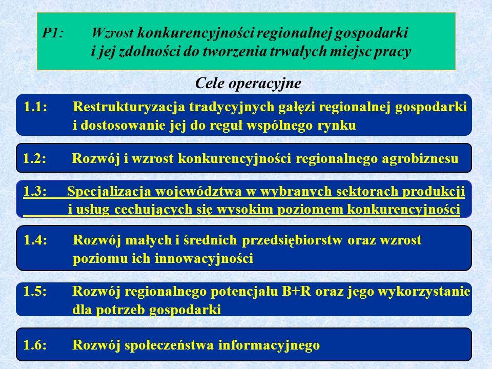 P1:Wzrost konkurencyjności regionalnej gospodarki i jej zdolności do tworzenia trwałych miejsc pracy 1.1: Restrukturyzacja tradycyjnych gałęzi regiona