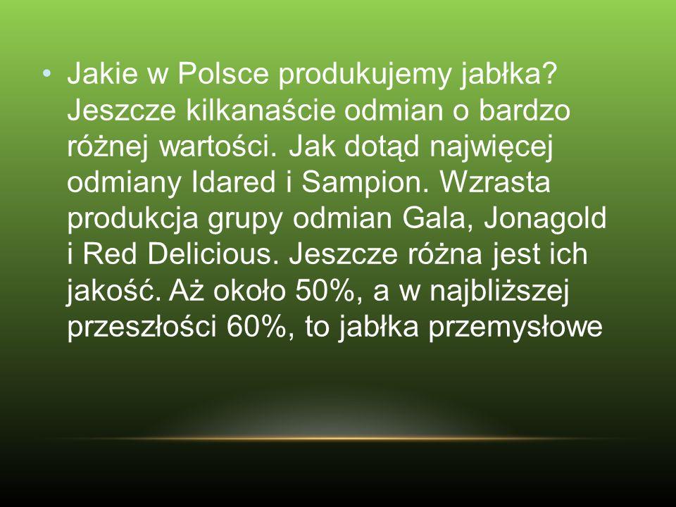 Jakie w Polsce produkujemy jabłka? Jeszcze kilkanaście odmian o bardzo różnej wartości. Jak dotąd najwięcej odmiany Idared i Sampion. Wzrasta produkcj