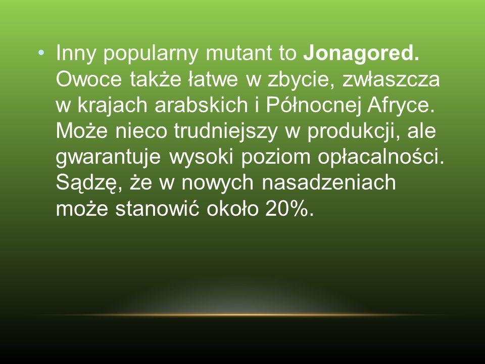 Inny popularny mutant to Jonagored. Owoce także łatwe w zbycie, zwłaszcza w krajach arabskich i Północnej Afryce. Może nieco trudniejszy w produkcji,