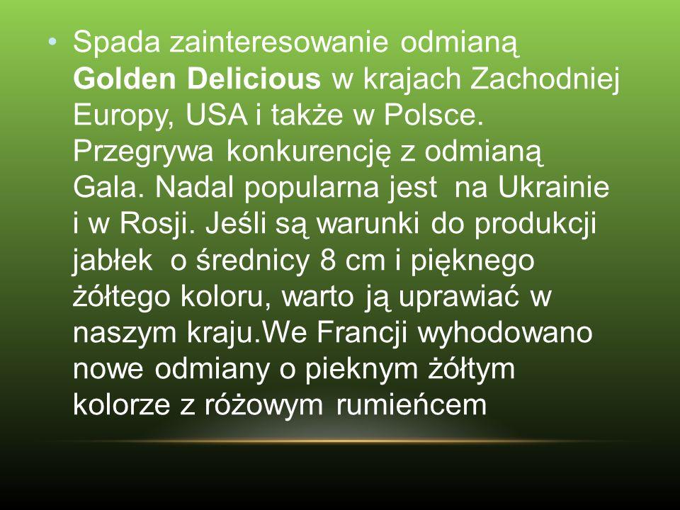 Spada zainteresowanie odmianą Golden Delicious w krajach Zachodniej Europy, USA i także w Polsce. Przegrywa konkurencję z odmianą Gala. Nadal popularn