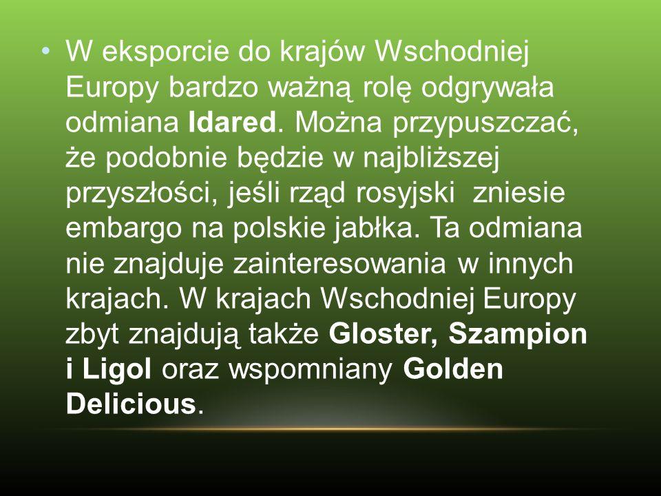 W eksporcie do krajów Wschodniej Europy bardzo ważną rolę odgrywała odmiana Idared. Można przypuszczać, że podobnie będzie w najbliższej przyszłości,