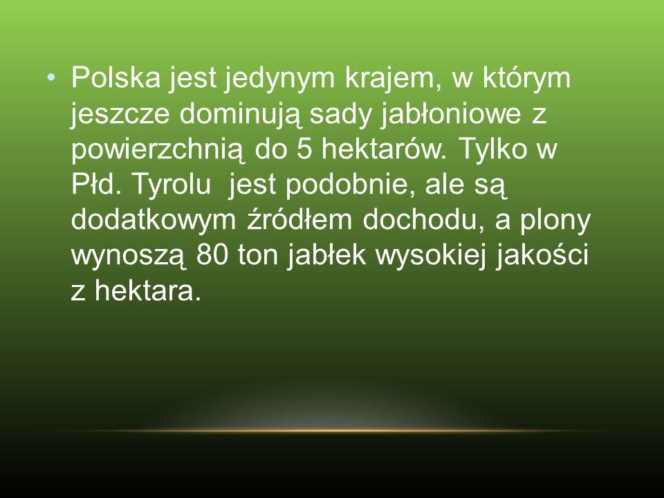 Polska jest jedynym krajem, w którym jeszcze dominują sady jabłoniowe z powierzchnią do 5 hektarów. Tylko w Płd. Tyrolu jest podobnie, ale są dodatkow