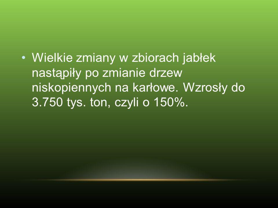 Ceny skupu jabłek przemysłowych mogą wynieść, przy mniejszej podaży i większym zapotrzebowaniu na sok zagęszczony 0,40-0,50 zł/kg, a wysokiej podaży jabłek, powyżej 2,0 mln ton, może tylko 0,25 zł/kg.
