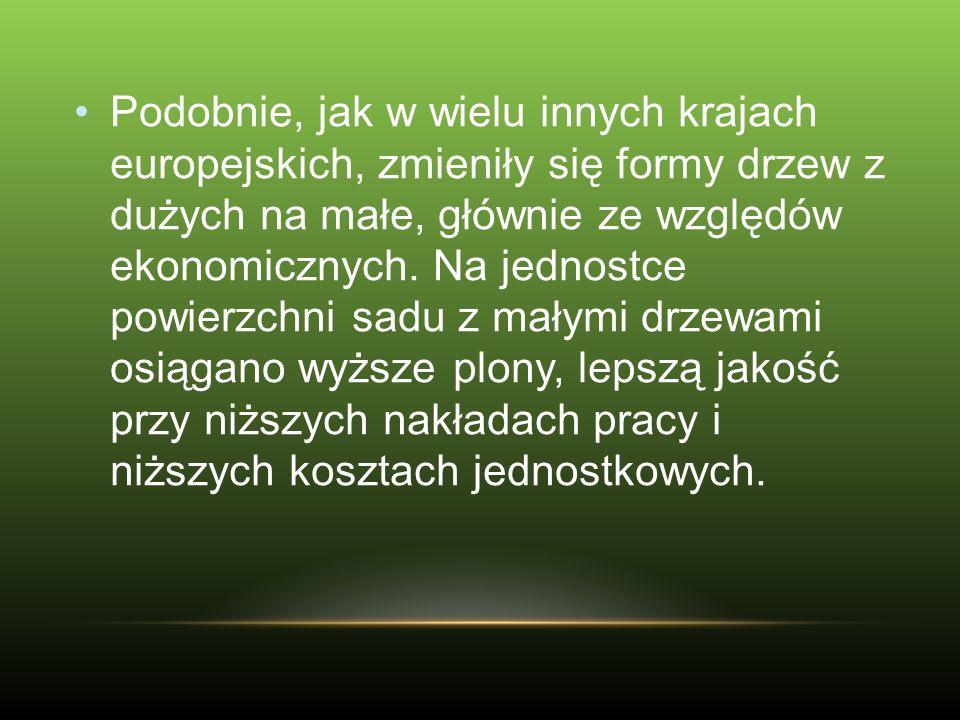 Na dużą uwagę zasługują odmiany wyhodowane w Polsce, w firmie Aj!Apple.