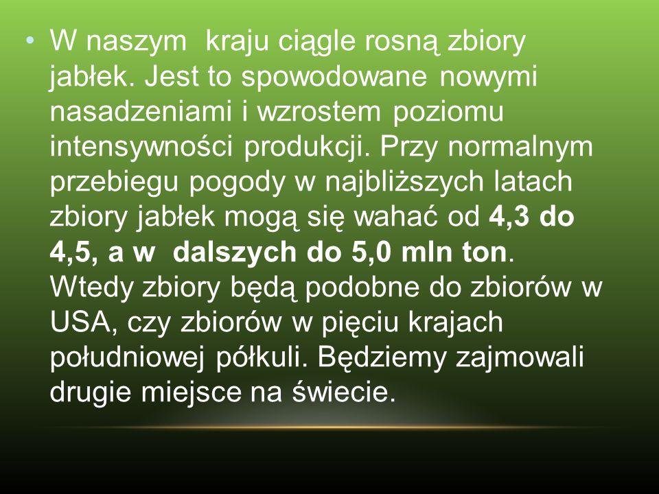 Oprócz Chin tylko w Polsce wzrastają zbiory jabłek.