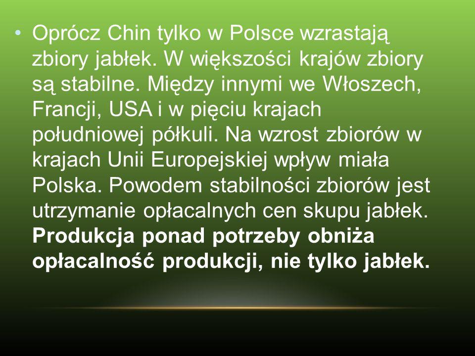 Oprócz Chin tylko w Polsce wzrastają zbiory jabłek. W większości krajów zbiory są stabilne. Między innymi we Włoszech, Francji, USA i w pięciu krajach