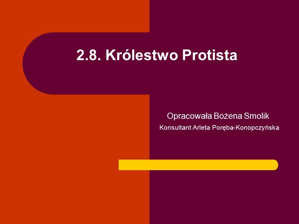 2.8. Królestwo Protista Opracowała Bożena Smolik Konsultant Arleta Poręba-Konopczyńska