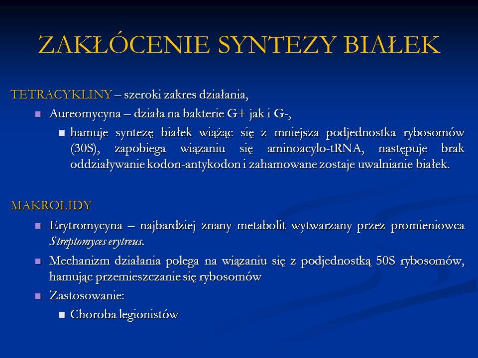 ZAKŁÓCENIE SYNTEZY BIAŁEK TETRACYKLINY – szeroki zakres działania, Aureomycyna – działa na bakterie G+ jak i G-, Aureomycyna – działa na bakterie G+ j