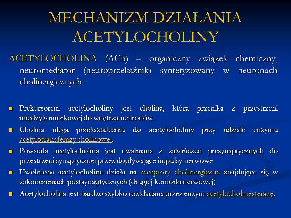 MECHANIZM DZIAŁANIA ACETYLOCHOLINY ACETYLOCHOLINA (ACh) – organiczny związek chemiczny, neuromediator (neuroprzekaźnik) syntetyzowany w neuronach cholinergicznych.